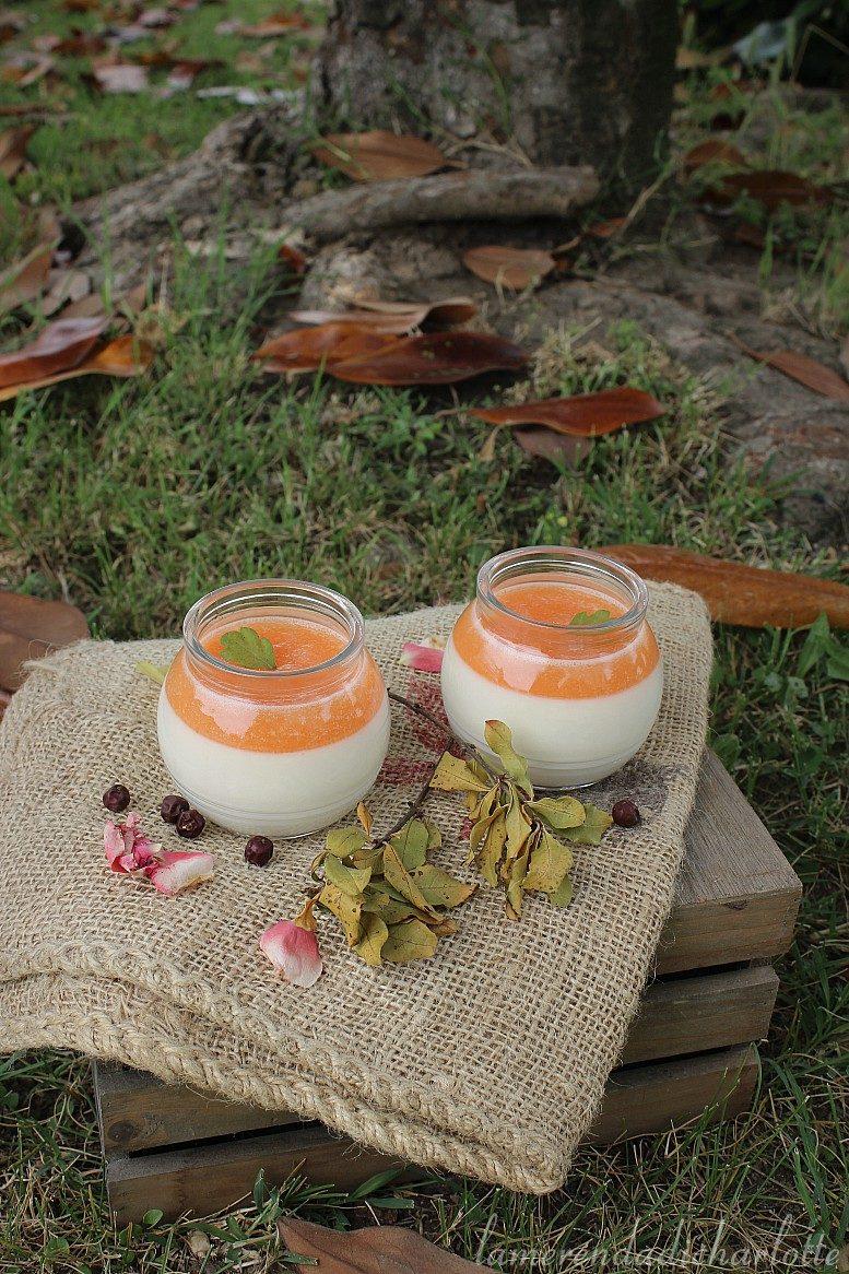 yogurt al melone