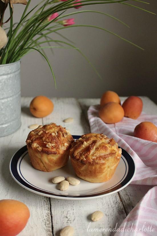 muffins alla farina di riso, yogurt e albicocche